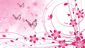 Color Pink by Pink Hd Wallpapers Wallpapersafari
