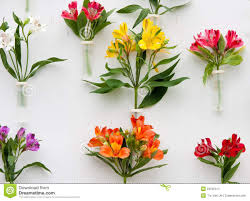decoration flowers decoration of beautiful flowers stock image image of petal