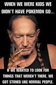 Nelson Meme - the great american disconnect political comments willie nelson