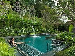Pool Garden Ideas Best 25 Tropical Pool Ideas On Pinterest Beautiful Pools Dream