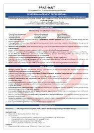 Sample Senior Management Resume Area Sales Manager Sample Resumes Download Resume Format Templates