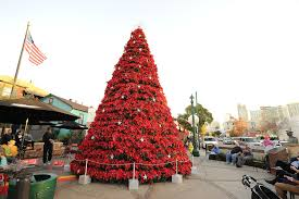 Christmas Tree Shop In Freehold - christmas tree shop san diego rainforest islands ferry