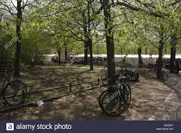 Market Stall Canopy by Sunny View Through Trees To White Canopy Flea Market Stalls Stock