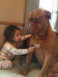 Dog Doctor Meme - 23 reasons every kid should grow up with a dog
