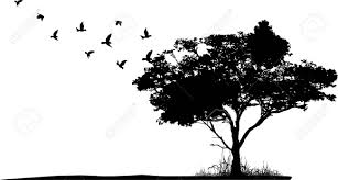 tree silhouette with birds flying royalty free cliparts vectors