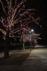 christmas lights that look like snow falling toronto fun places christmas lights at the beach