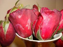 Flower Delivery Express Reviews Wesley Berry Florist Inc In Detroit Mi 48227 Citysearch