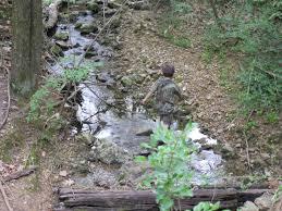 charming backyard creek ideas part 4 55 backyard landscaping