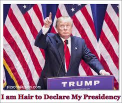 Meme Joke - donald trump hair memes funny jokes and trolls