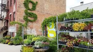 Internet Status Walled Garden by Shopper U0027s Diary Gowanus Nursery In Brooklyn Gardenista