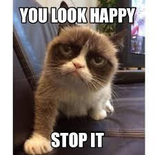21 Of The Best Grumpy - 21 best grumpy cat images on pinterest grumpy cat grumpy cats and