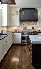 kitchen cabinets chicago suburbs kitchen cabinets chicago suburbs apartments in the western suburbs