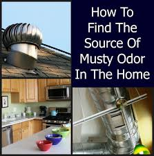 musty odor in a home home ec 101