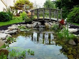 Backyard Fish Ponds by 33 Best Ponds Rochester Ny Backyard Ponds Fish Ponds Koi Ponds