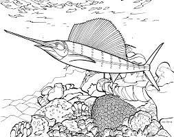 kids coloring coral reef coloring pages amphipod corals coloring