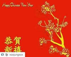 New Year Decorations Melbourne by The 25 Best Chinese New Year Melbourne Ideas On Pinterest