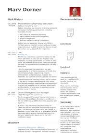 Sample Chemistry Resume by Technology Consultant Resume Samples Visualcv Resume Samples