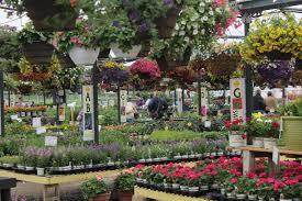 Image Flower Garden by Annuals Wilson U0027s Garden Center