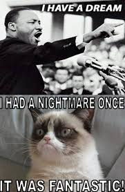 I Had A Dream Meme - i have a dream excited pinterest grumpy cat