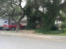 Car Rental San Antonio Tx 78240 10502 Country Flower San Antonio Tx 78240 Hotpads
