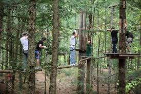 Arizona forest images Visit this adventure park hiding in an arizona forest jpg