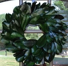 preserved magnolia wreath green 24 flora decor