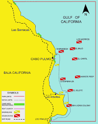 map cabo mexico welcome to cabo pulmo national marine park