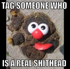 Tag Someone Who Memes - tag someone shithead memes random pinterest memes