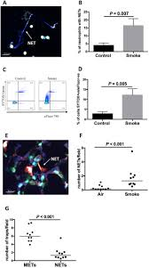 deoxyribonuclease 1 reduces pathogenic effects of cigarette smoke