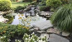 garden ponds design interior and deco backyard pond ideas small s