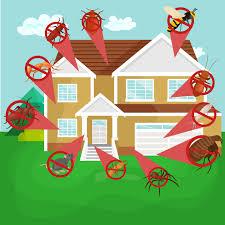 pest control coupons palatka termite extermination