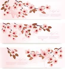 vector cherry blossoms free vector 9 736 free