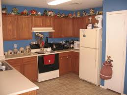 vines above kitchen cabinets kitchen shelves instead of cabinets