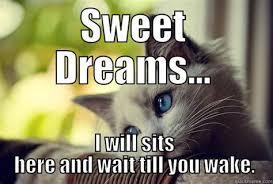 Sweet Dreams Meme - th id oip plrkg nawtma81kikp qwhafa