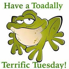 Happy Tuesday Meme - pin by karmabit on tuesday s pinterest tuesday