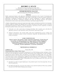 example business resume program analyst resume samples free resume example and writing mainframe resume westminster