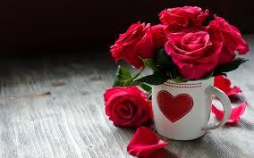 beautiful roses love wallpaper hd download of red roses