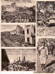 chambre agriculture 23 of 23 postcards tunisia sfax all olive industry chambre mixte de