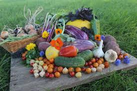 south dakota local food recipes u2014 glory garden