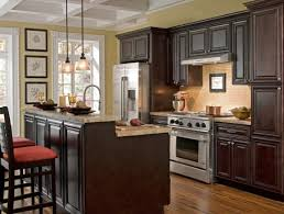 Cabinets To Go Best Kitchen Cabinets To Go Fresh Home Design - Kitchen to go cabinets