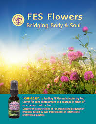 information packet for fes wholesale accounts by flower essence