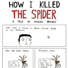Kill Spider Meme - how to kill a spider by maxterfa meme center