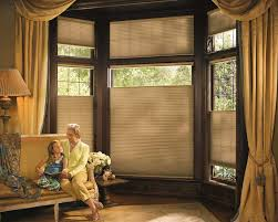 Touched By Design Blinds Shades Hunter Douglas Duette Ultraglide Traditional Den Jpg