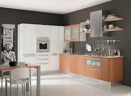 Painting Inside Kitchen Cabinets Wonderful Modern Kitchen Cabinet Pics Decoration Inspiration Tikspor