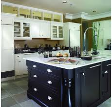 Modren Kitchen Cabinets Trends Transitional To Design Ideas - Trends in kitchen cabinets