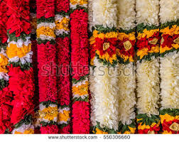 hindu garland south indian wedding stock images royalty free images vectors