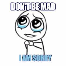 I Am Sorry Meme - meme maker dont be mad i am sorry
