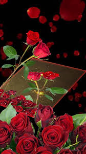 Red Rose Bouquet Red Rose Bouquet Hd Wallpaper Android Apps On Google Play