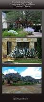 native texas landscaping plants 30 best desert landscaping images on pinterest desert gardening