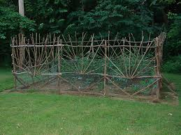 best 25 natural fence ideas on pinterest living fence living